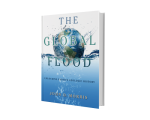 gen-flood-flat